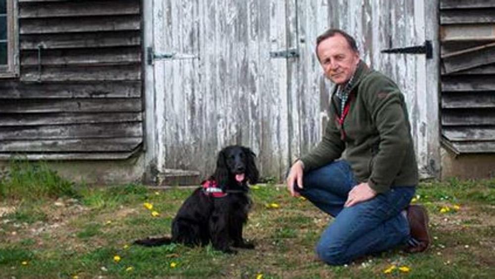 Un cane investigatore in grado di ritrovare i gatti for Idea casa legnano